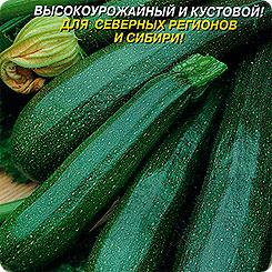 Семена Кабачок цуккини Нефрит F1, 1 г, Плазмас