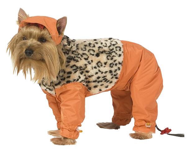 Комбинезон для собак ТУЗИК размер XL мужской, оранжевый, черный, длина спины 37 см