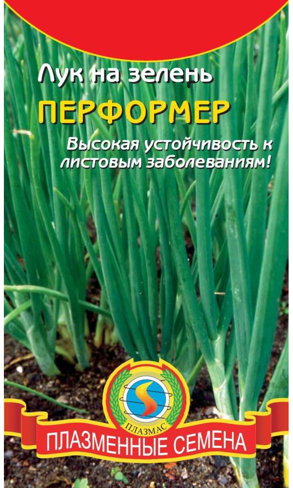 Семена Лук на зелень Перформер, 70-85 шт, Плазмас