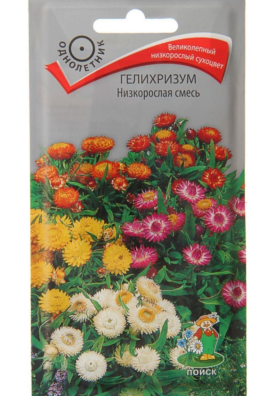 Семена Гелихризум Низкорослая смесь, 0,1 г Поиск