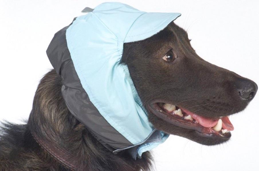 Шапка для собак ТУЗИК размер унисекс, голубой, серый, длина спины см