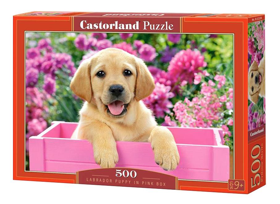 Купить Пазл Castorland Щенок в коробке 500 деталей, Пазлы