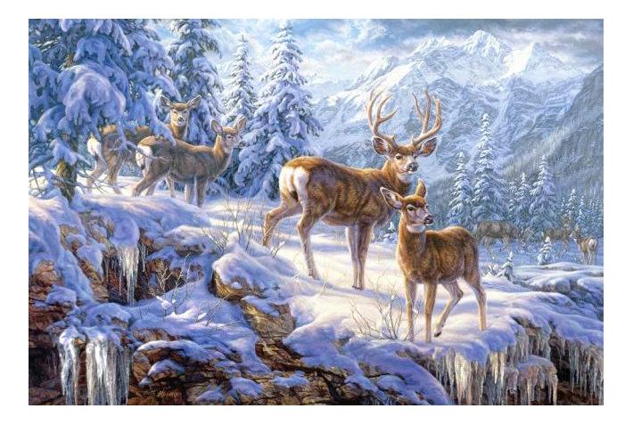 Пазл Castorland Зимние горы 1000 деталей