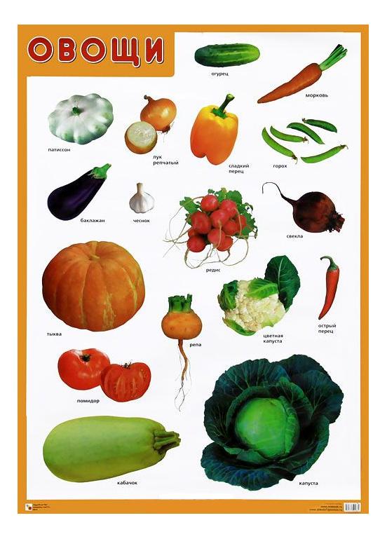 Купить Интерактивный плакат Мозаика-Синтез Овощи, Подготовка к школе