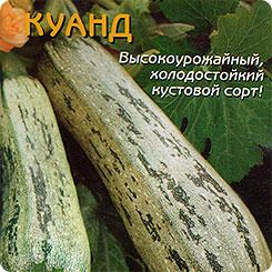 Семена Кабачок цуккини Куанд, 10 шт, Плазмас