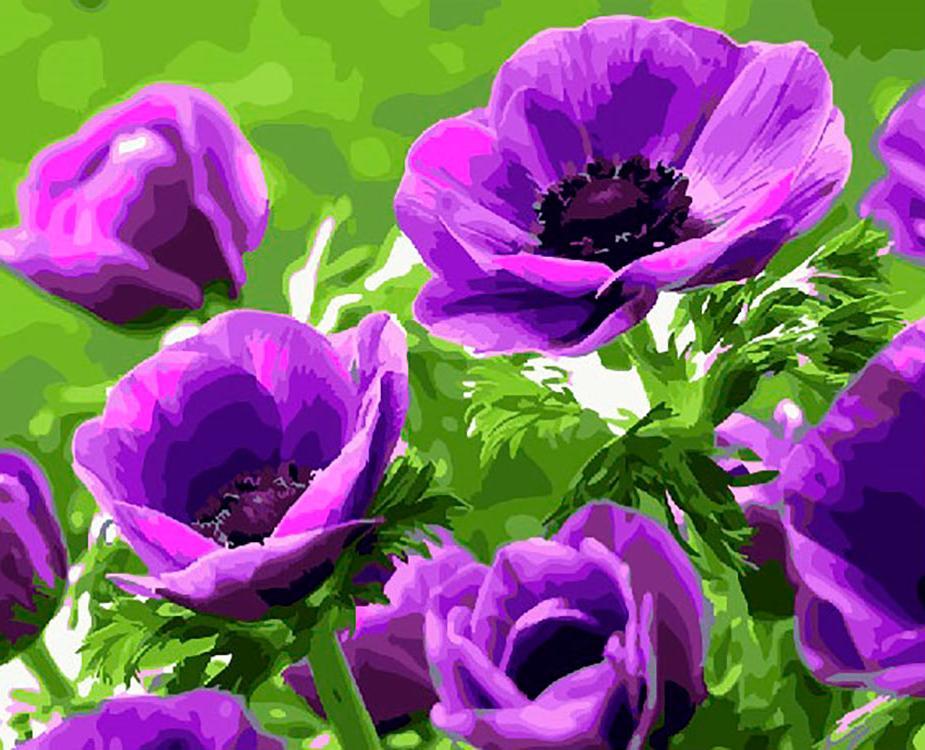 заливкой делаются фото разных цветов с названиями тем как
