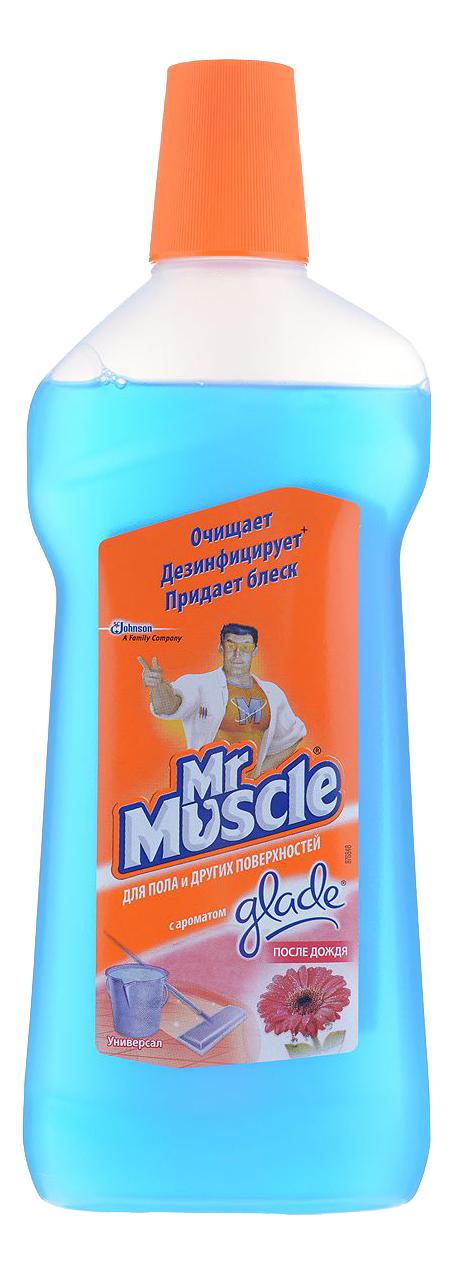 Универсальное чистящее средство Mr.Muscle после дождя