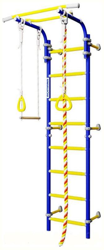 Детский спортивный комплекс Romana Next 1 (ДСКМ-2С-8,06,Г1,490,18-24) синяя слива