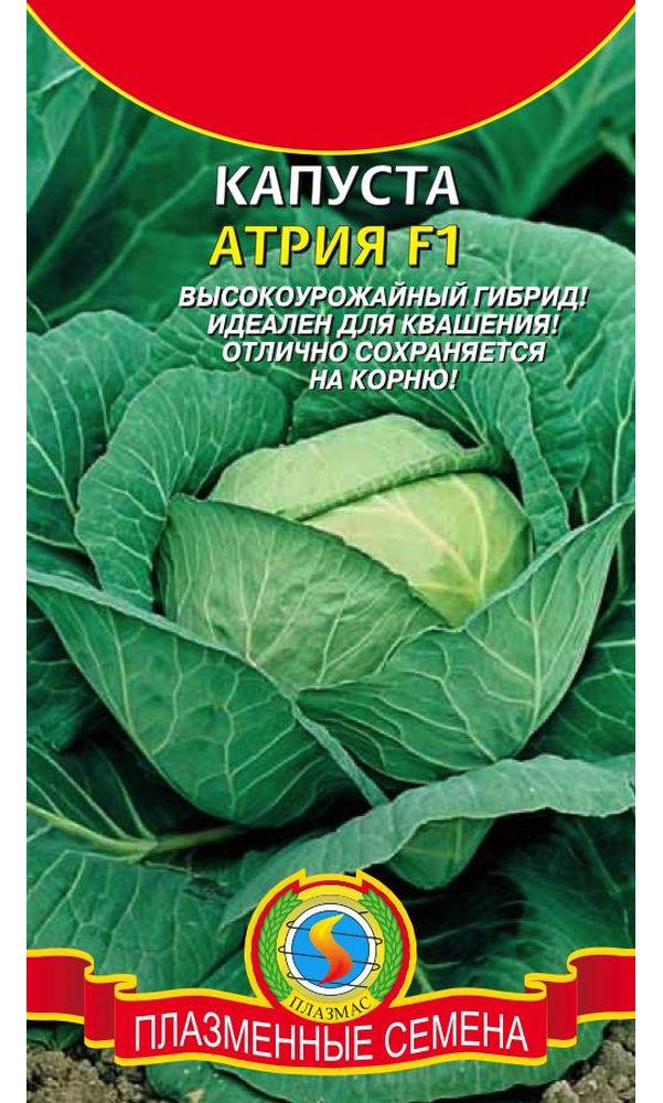 Семена Капуста белокочанная Атрия F1, 10