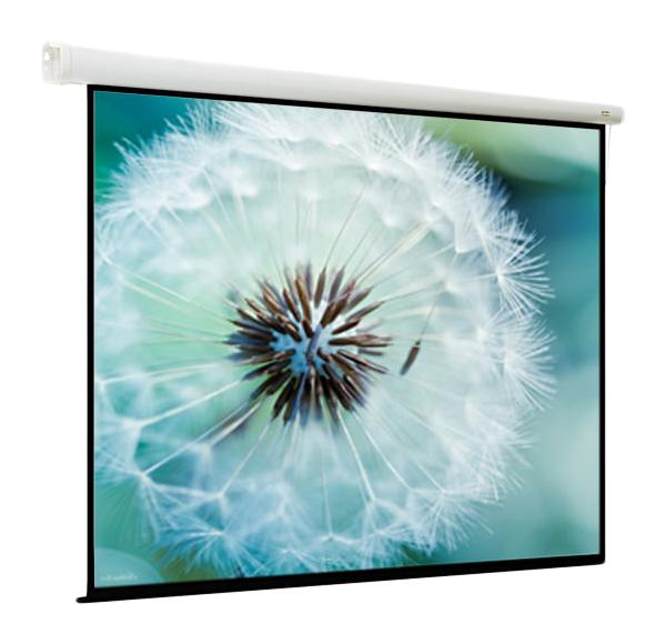 Экран для видеопроектора ViewScreen Breston EBR 1107