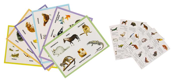 Купить Игра настольная Рыжий кот Лото с загадками, Мои Домашние Животные 3+, Семейные настольные игры