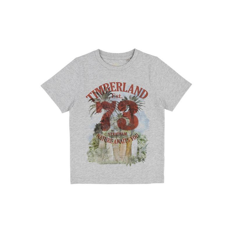 Купить T25M72/A32 SS18, Футболка детская Timberland, цв. серый, р-р 114, Футболки для мальчиков