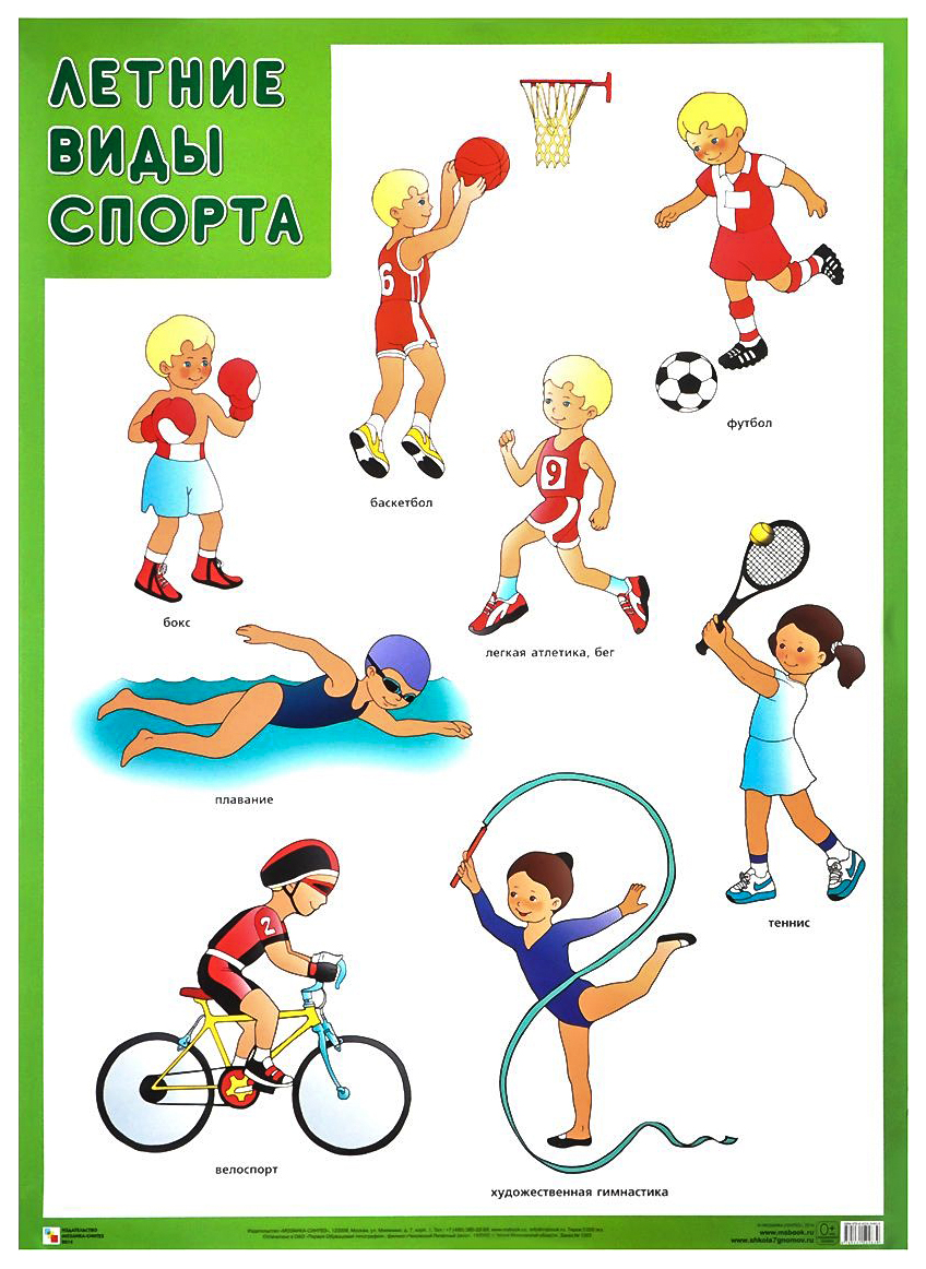 Плакат  Летние виды спорта