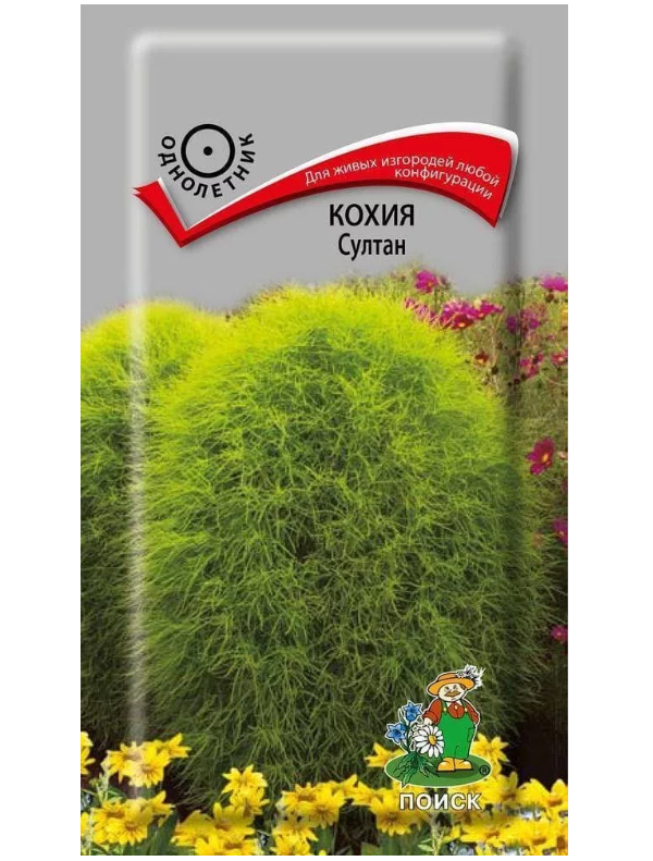 Семена Кохия Султан, 0,1 г Поиск