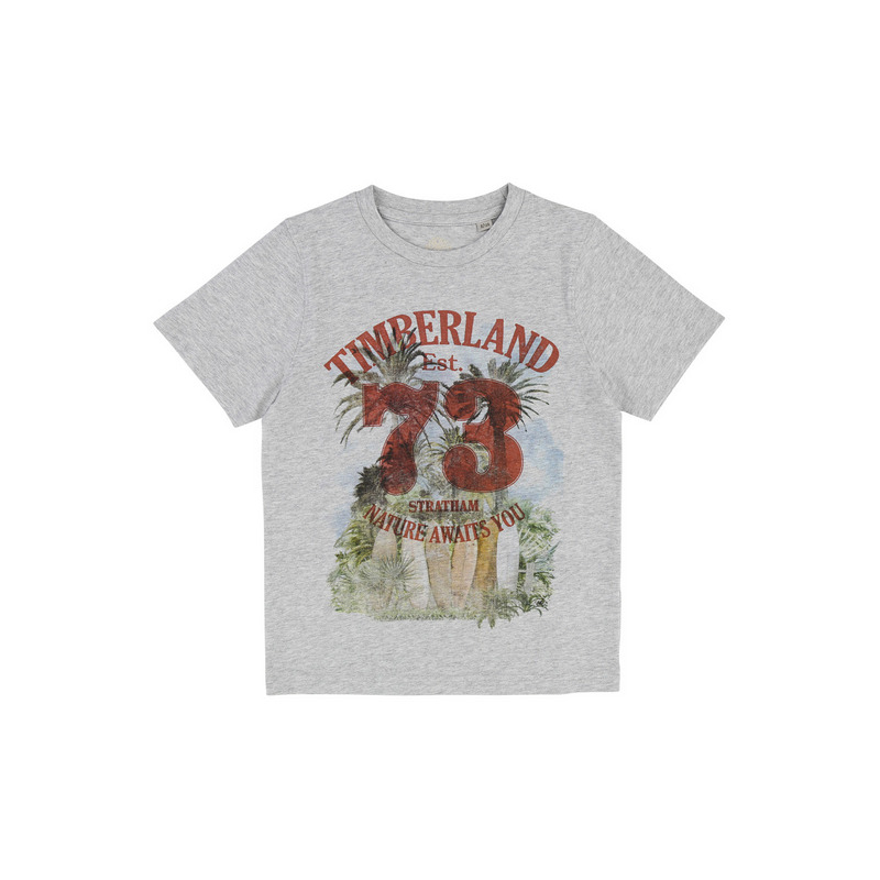 Купить T25M72/A32 SS18, Футболка детская Timberland, цв. серый, р-р 138, Футболки для мальчиков