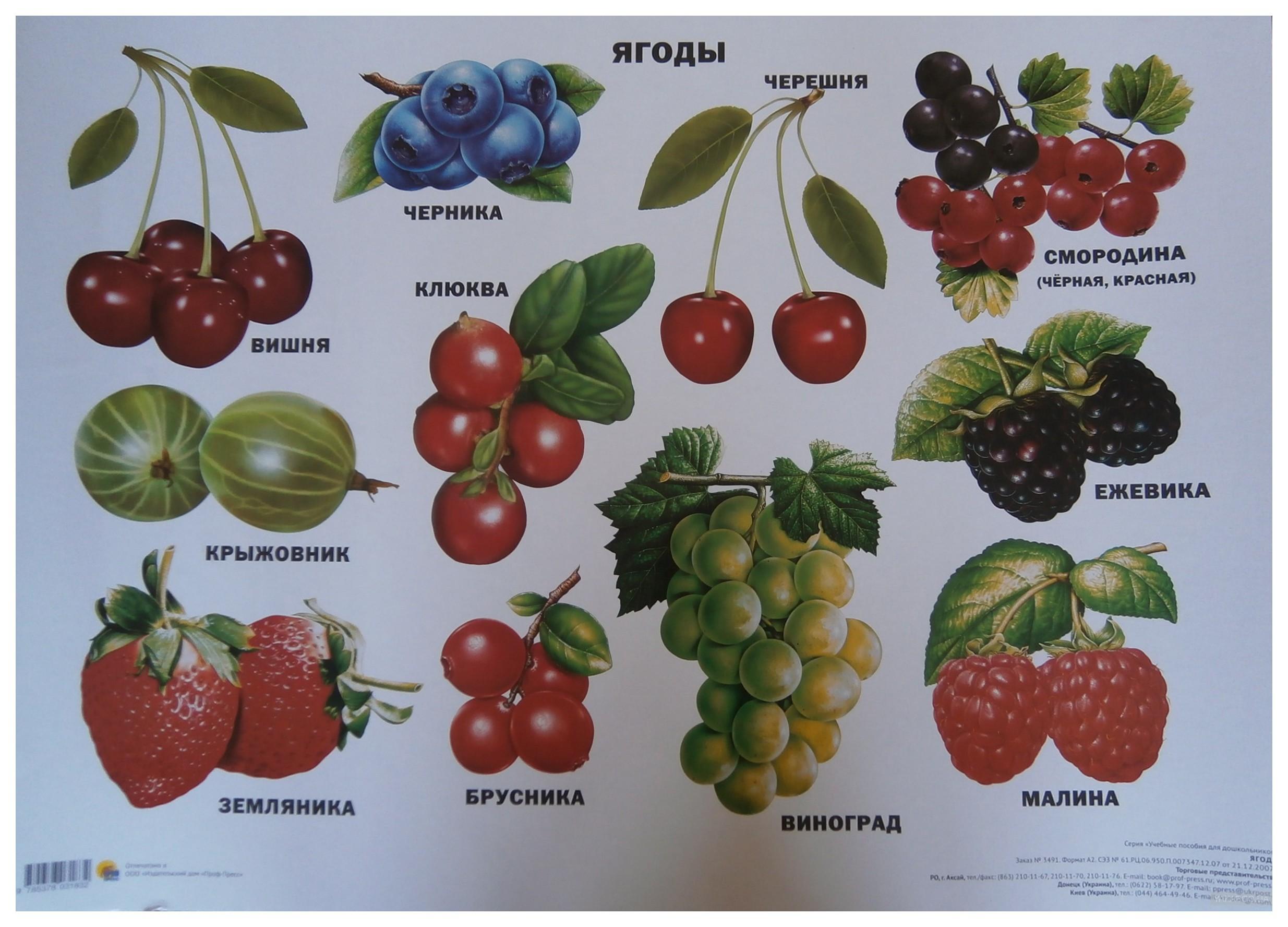 сказали пускать ягоды и фрукты в картинках с названиями слову, всякая современная