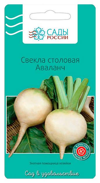 Семена Свекла Аваланч, 0,5 г Сады России