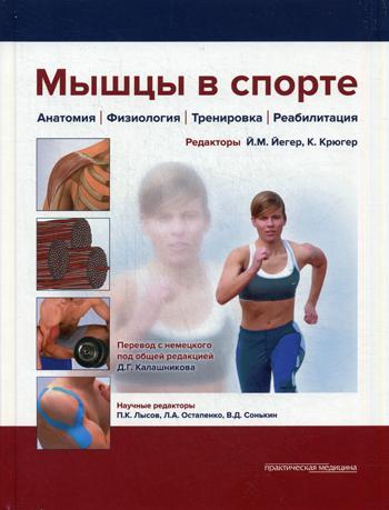 Мышцы В Спорте