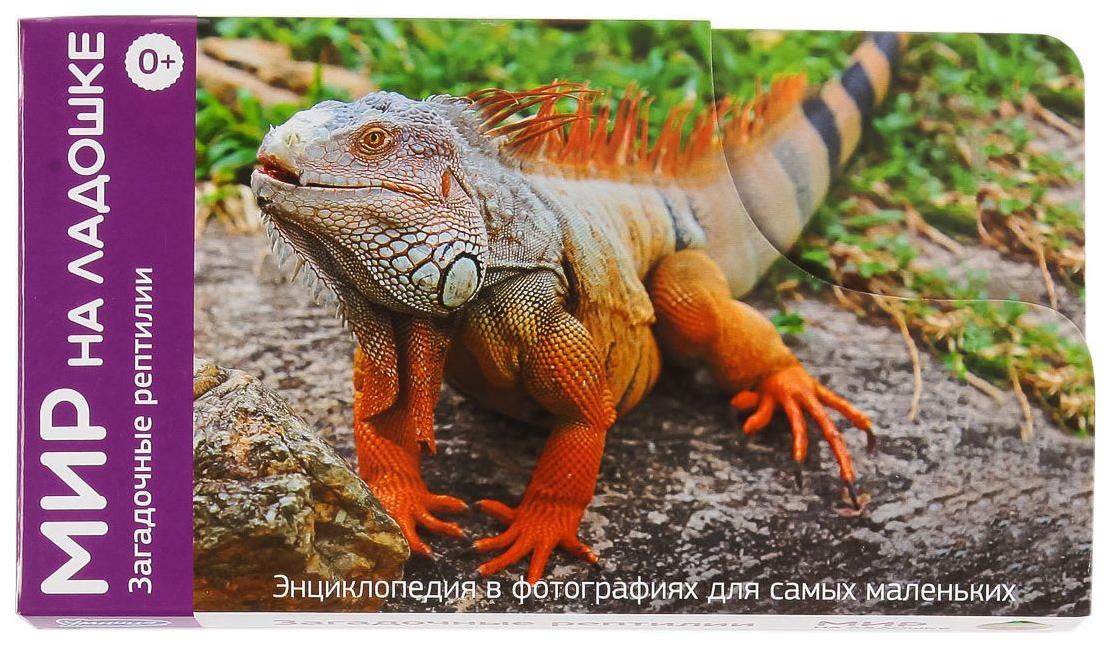 Купить Карточки обучающие Умница Мир на ладошке Загадочные рептилии,