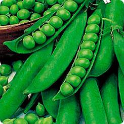 Семена Горох Сладкий Поползун, 7 г, Premium seeds