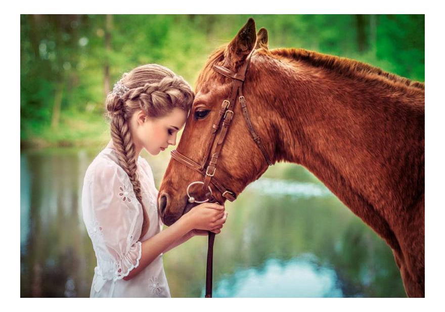 Купить Пазл Castorland Девушка и лошадь 500 деталей, Пазлы