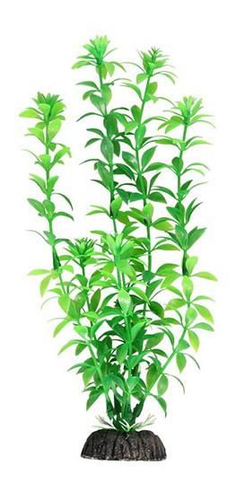 Растение аквариумное Гемиантус зеленый, 30 см