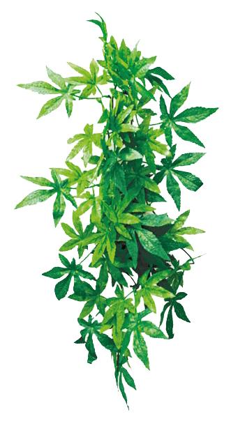 Искусственное растение Repti Zoo 40см
