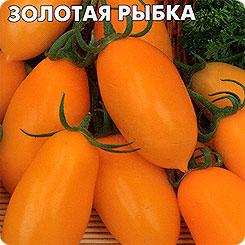 СЕДЕК 73117