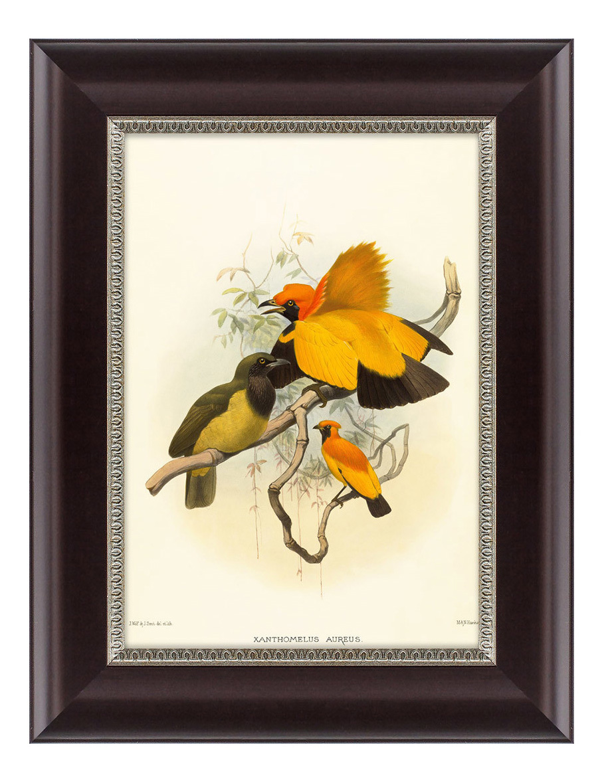 Картина Картины в Квартиру Золотые Райские Птицы (25х33 см) фото