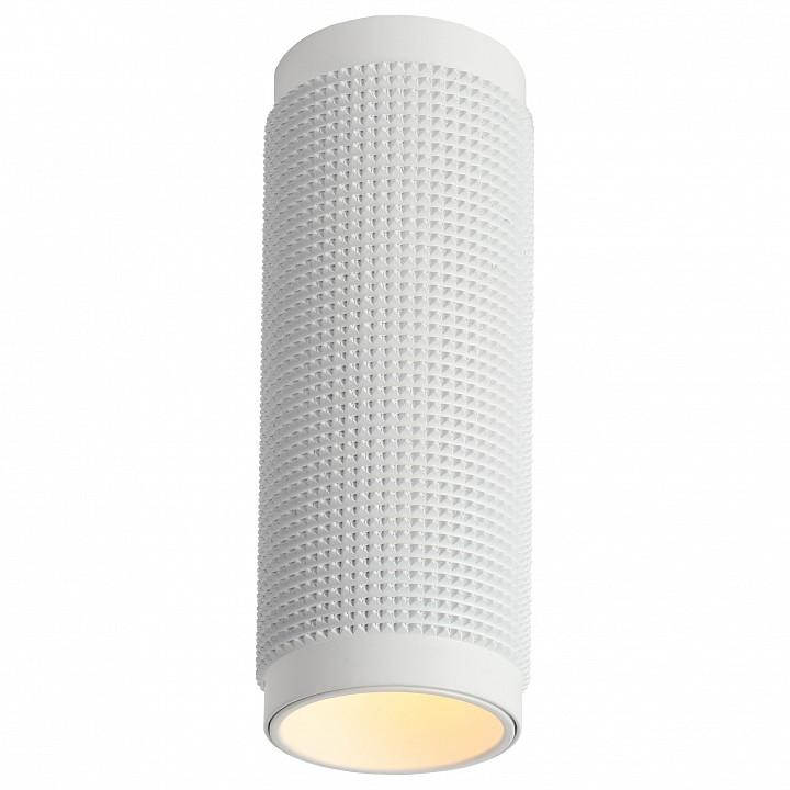Настенный светодиодный светильник Favourite Biofield 2436-2W
