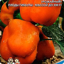 Семена Перец сладкий Гигант Оранжевый F1, 20 шт, Уральский дачник