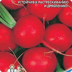 Семена Редис Лёшка F1, 1 г, Уральский дачник
