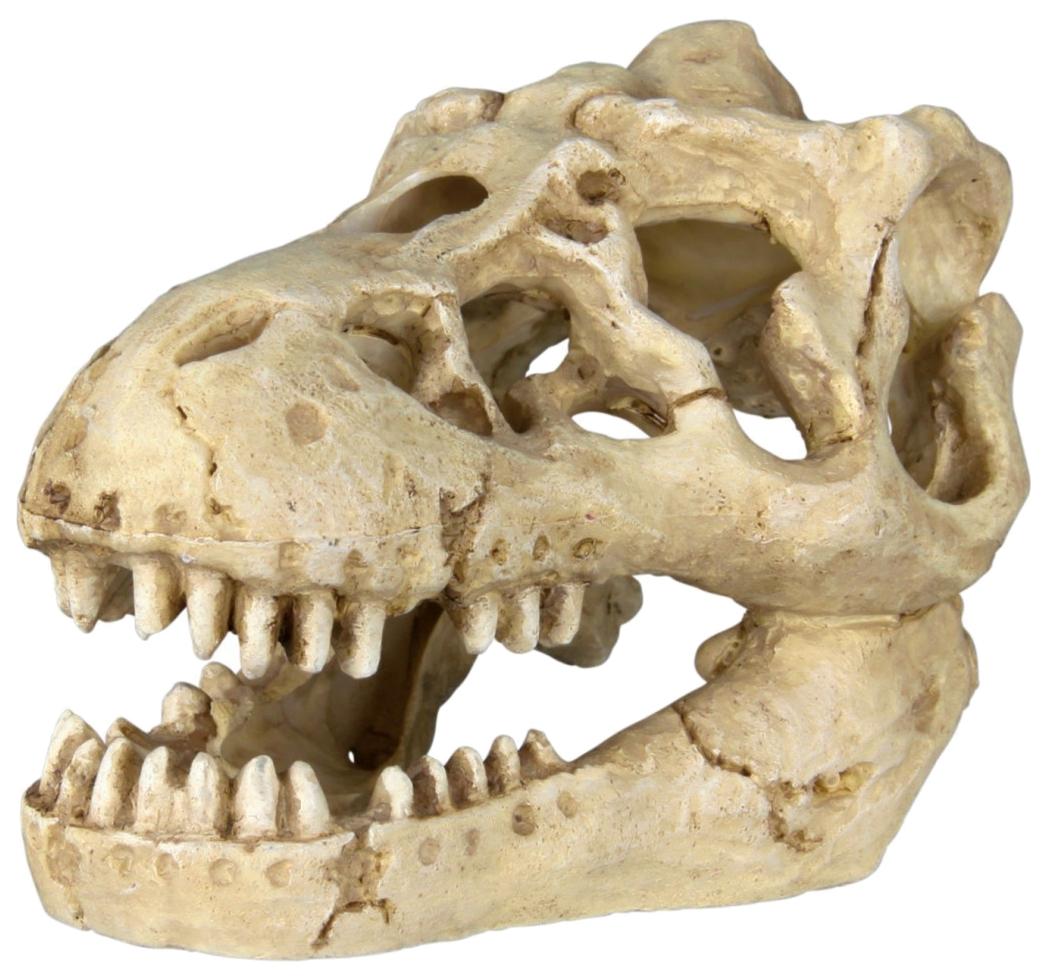 Грот для аквариума TRIXIE Skulls Черепа животных, в ассортименте, 8-11 см, 6 шт фото