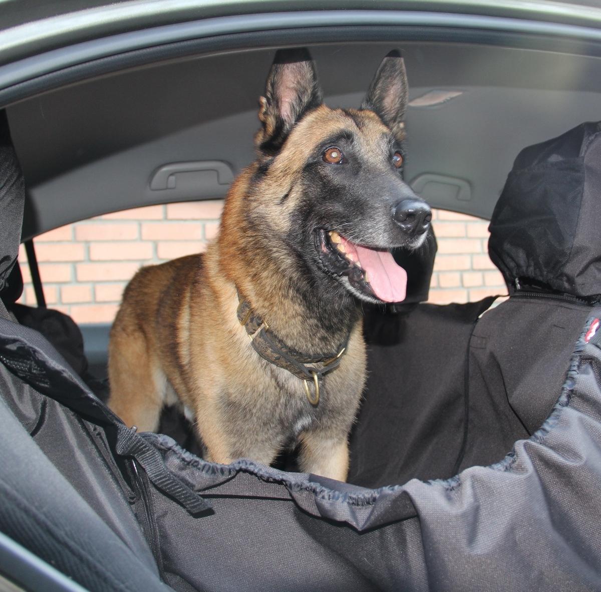 OSSO Car Premium Автогамак для перевозки собак