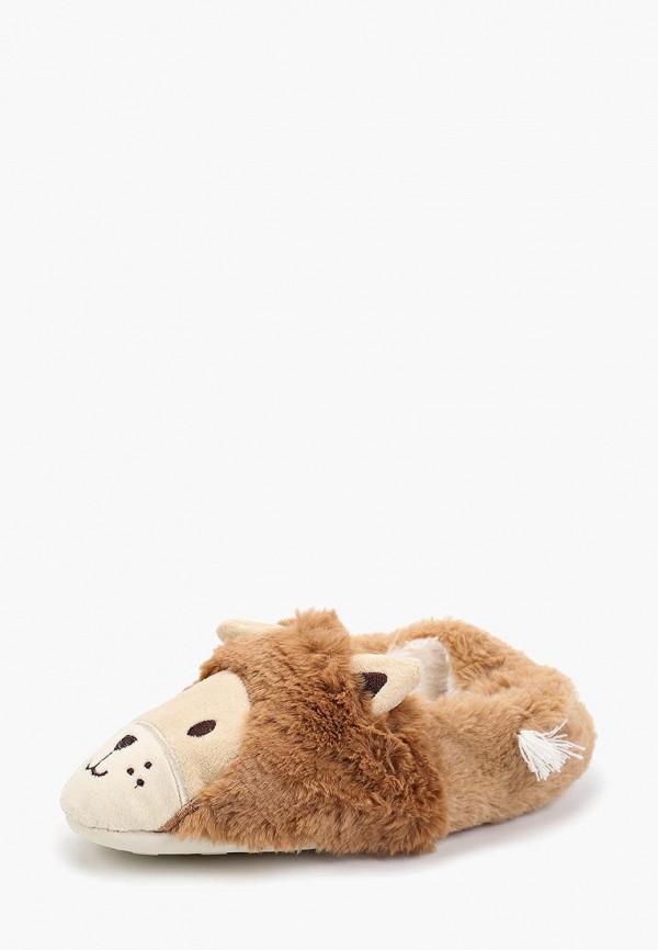 Домашние тапочки женские Halluci Львы с задником коричневые 38-39 RU