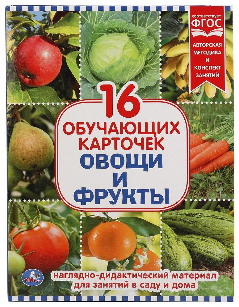 Купить Игра Умка Овощи И Фрукты 167 х 218 мм, Дидактические игры