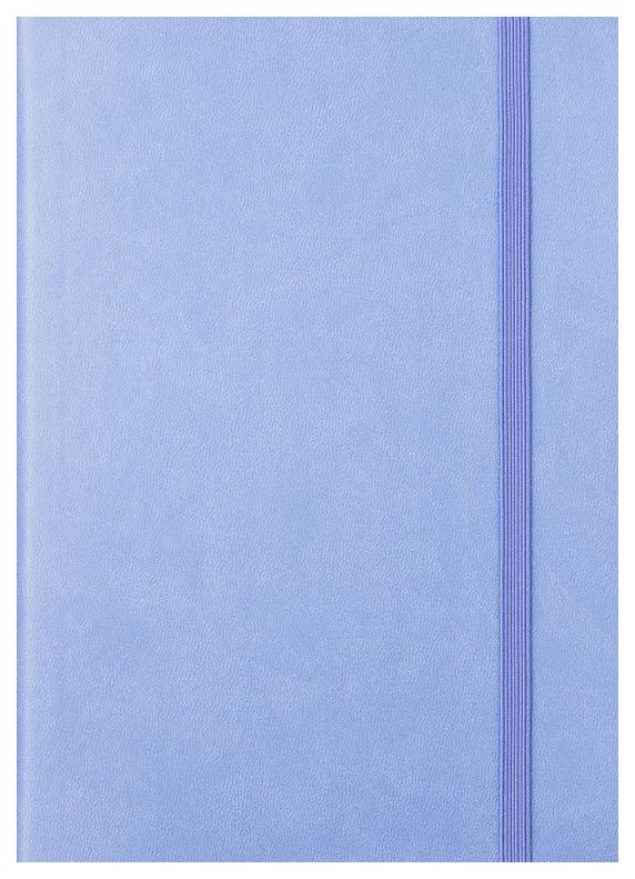 Ежедневник датированный на 2020 год Spectrum, А5, 168 листов, линия, лавандовый