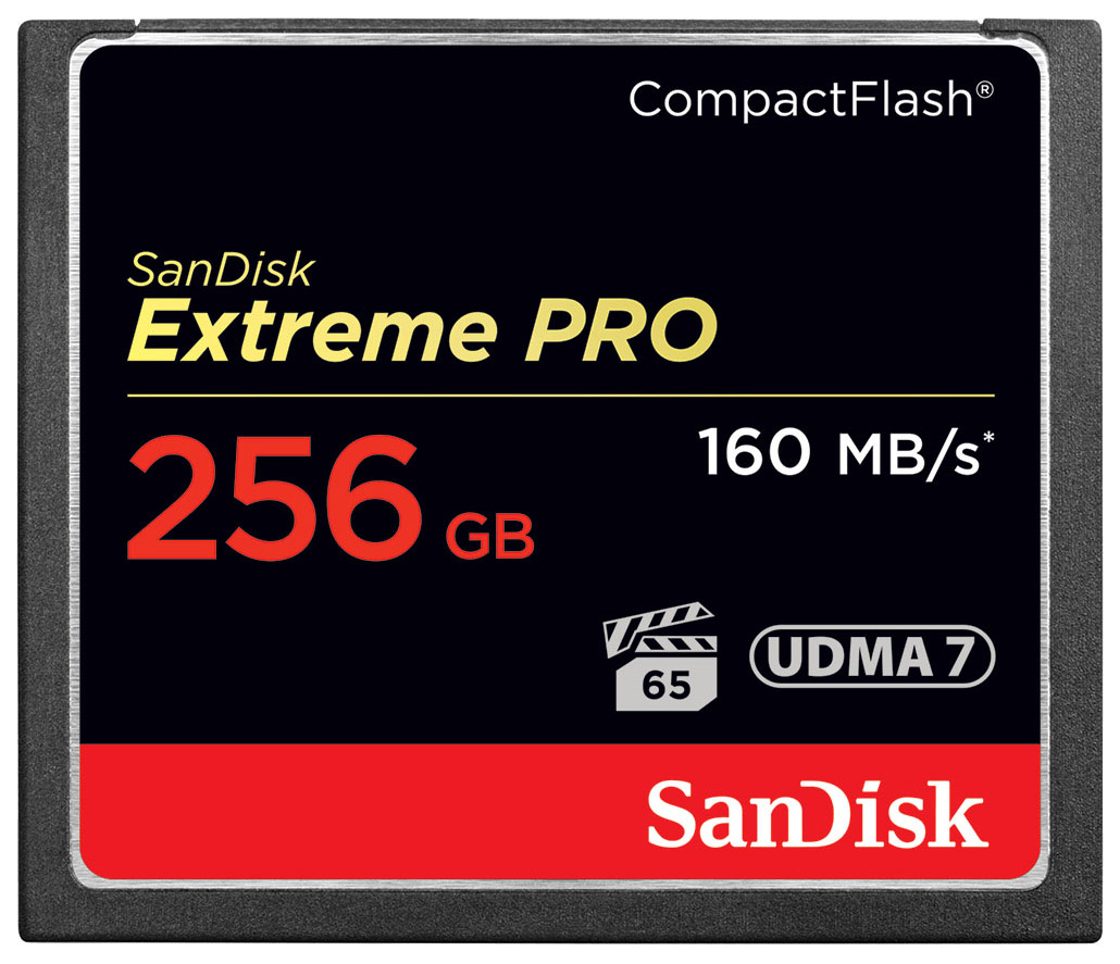 Карта памяти SanDisk Compact Flash ExPro SDCFXPS