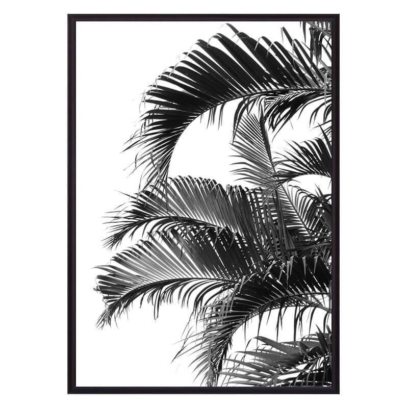 Постер в рамке Пальмовые листья 30х40 см