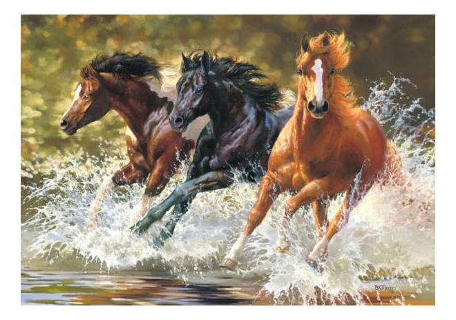 Купить Пазл Castorland Лошади 500 деталей, Пазлы