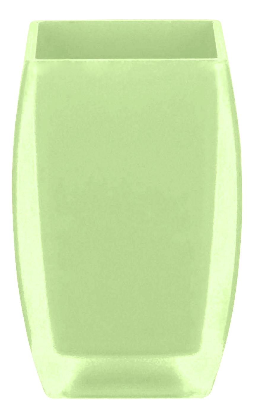 Стакан для зубных щеток Spirella Freddo 1016100