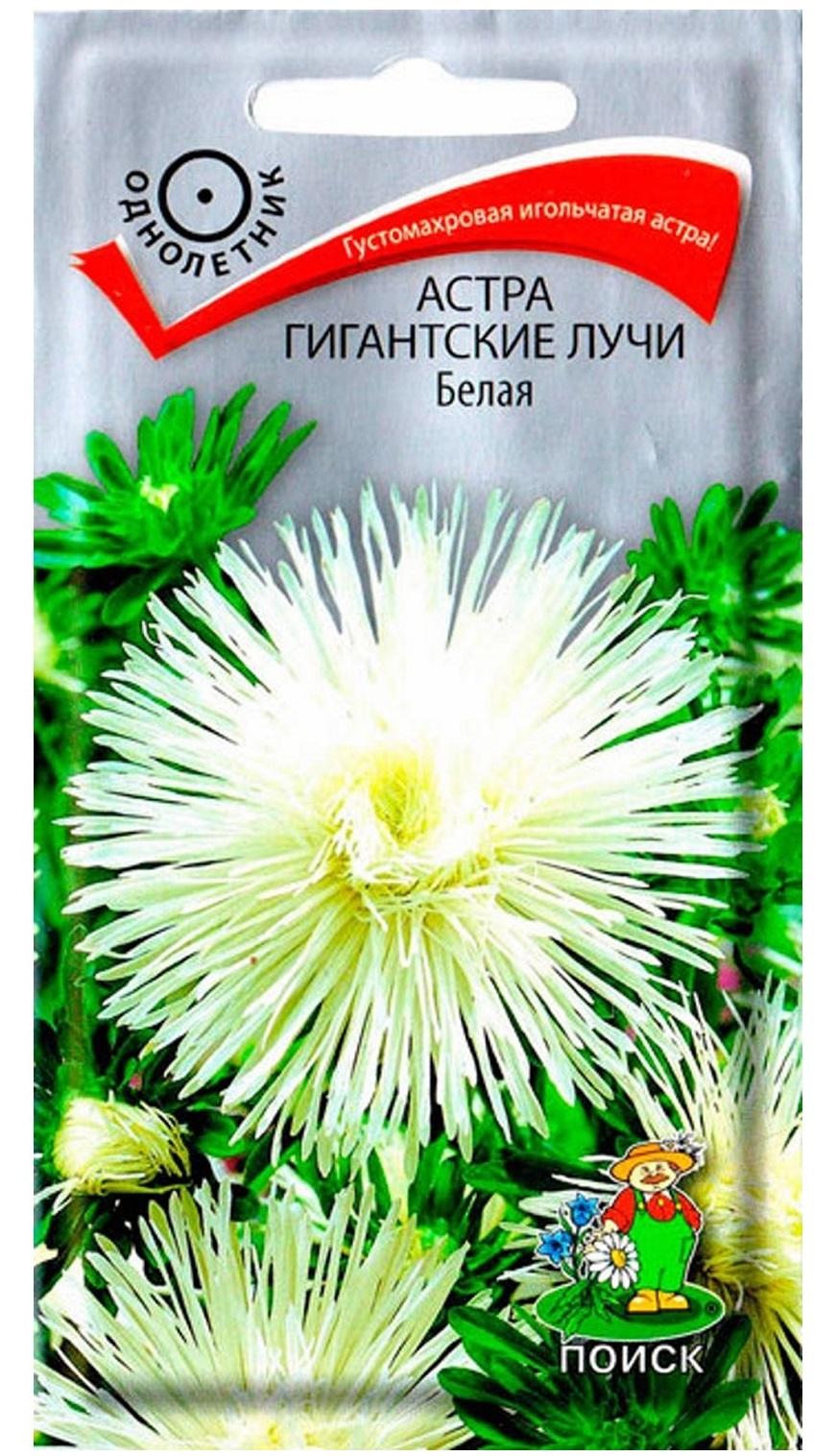 Семена Астра Гигантские лучи Белая, 0,3 г Поиск