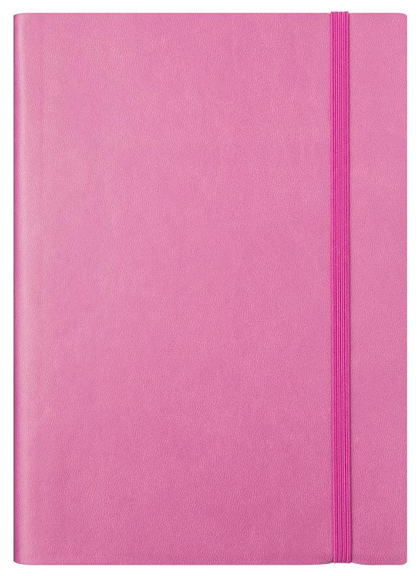 Ежедневник датированный на 2020 год Spectrum, А5, 168 листов, линия, розовый