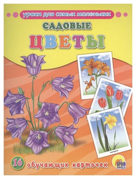 Обучающие карточки проф-Пресс Садовые Цветы (16 карточек)