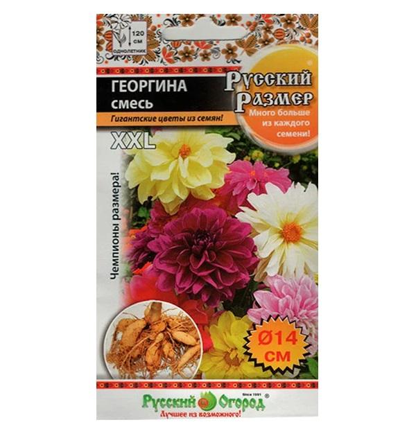 Семена Георгина Русский размер, Смесь, 30 шт, Русский огород