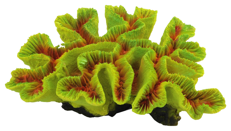 Искусственный коралл Laguna Каталофиллия 74004093