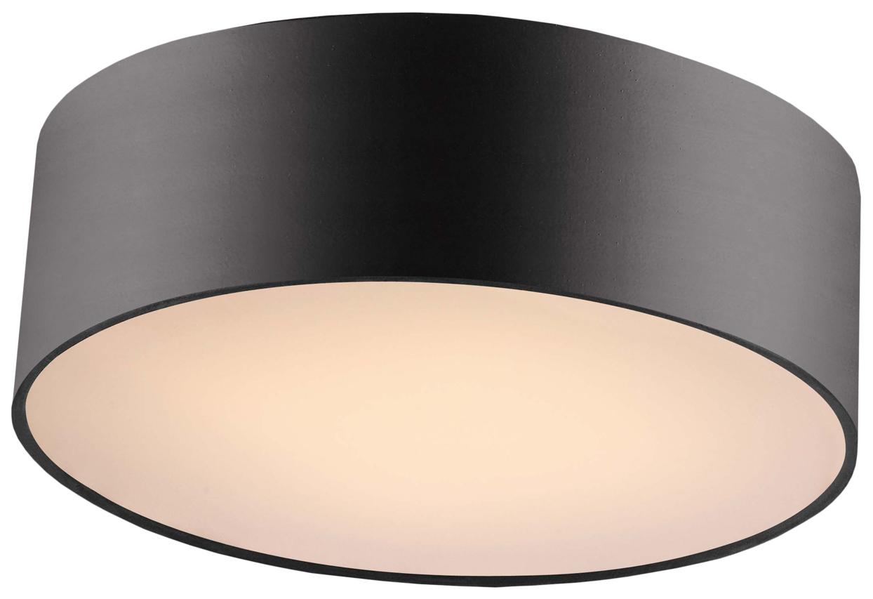 Потолочный светильник Favourite Cerchi 1514-2C1 фото