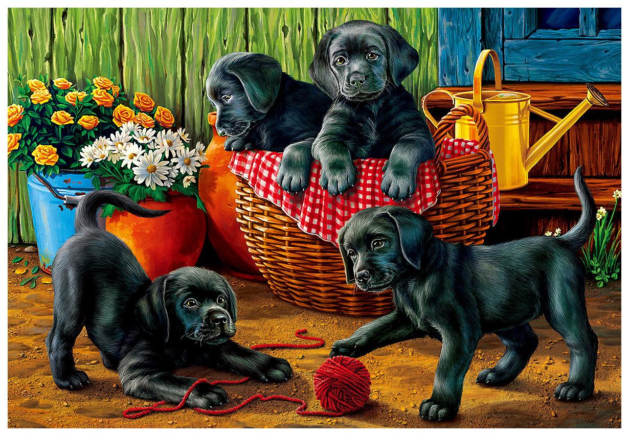 Купить Пазл Art puzzle Черные лабрадоры в саду ХАП1500-4461 1500 элементов, Пазлы