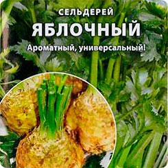 Семена Сельдерей корневой Яблочный, 0,5 г, Русский огород