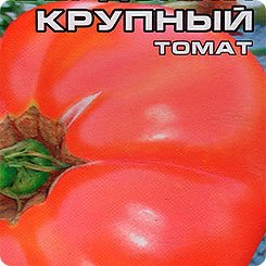 Семена Томат Бердский крупный, 20 шт, Сибирский